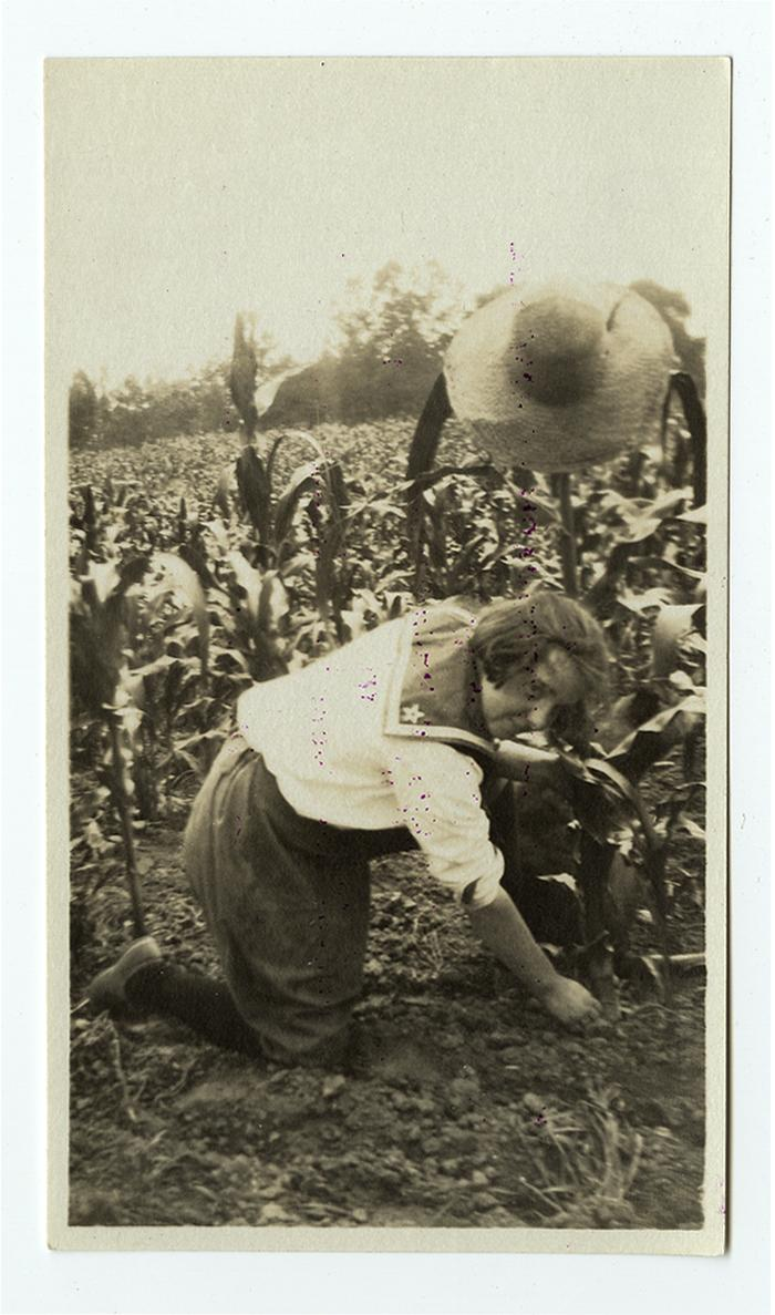 Photograph shows a young Caucasian woman with brown hair (identifed as Lu on the back) kneeling in a field of corn. She's wearing dark shoes, hose and bloomers, and a white sailor's top. A straw hat is hanging from the cornstalk she's tending. circa 1917. From the Philadelphia War Photograph Committee collection [V03]